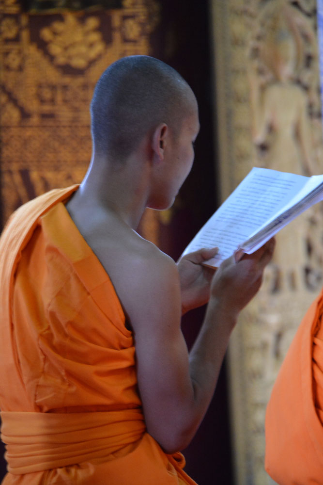 monk-praying-in-a-luang-prabang-temple